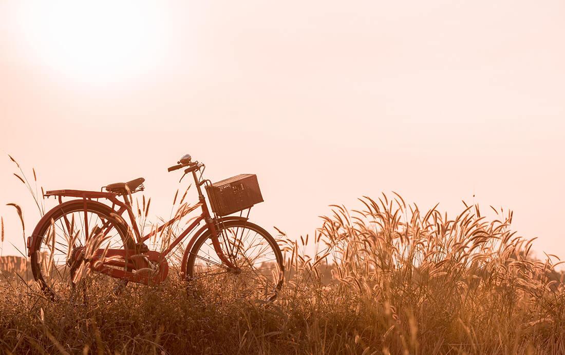 De top-5 unieke tips voor fietsen in de zomer!