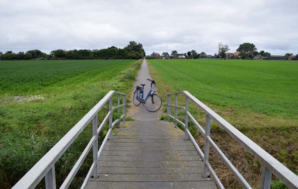 Blog - Nazomeren in Noord-Holland