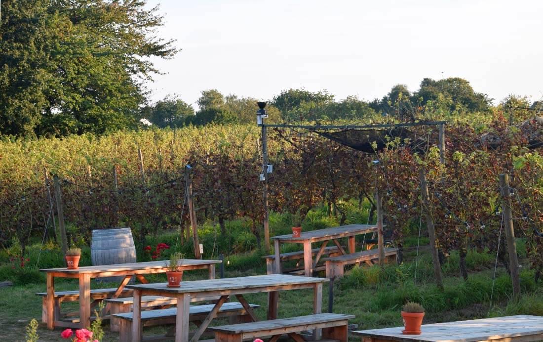 Nederlands Wijnbouwcentrum Groesbeek