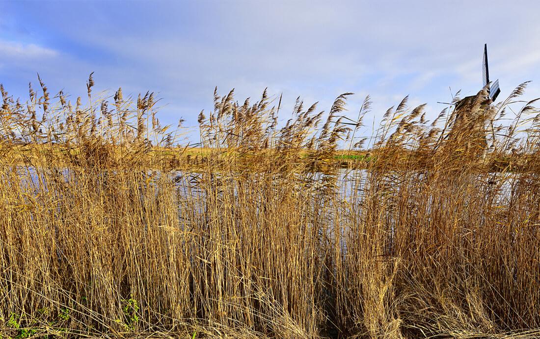 Fietsroute van de week (27)   Giethoorn en omgeving
