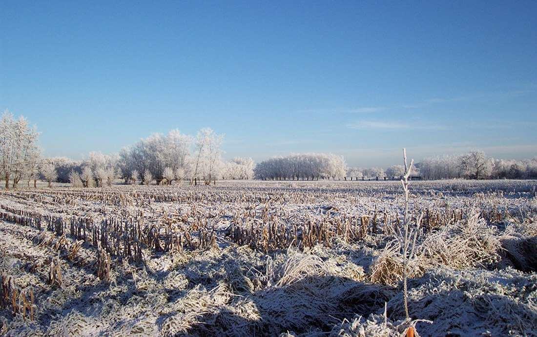 Fietsroutes voor mooie winterse plaatjes