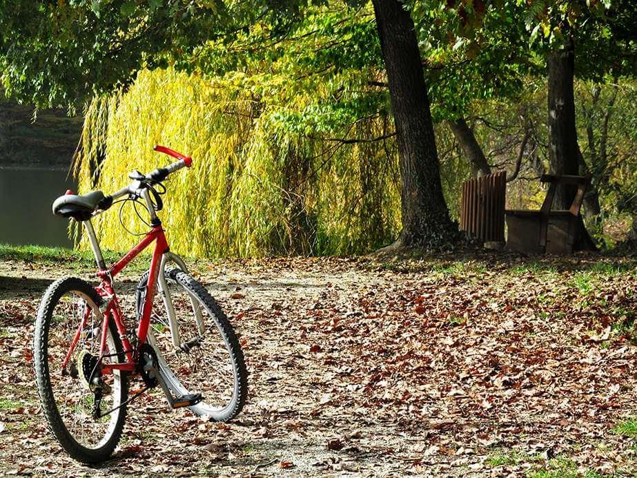 Wat vindt u de perfecte fietsroute?