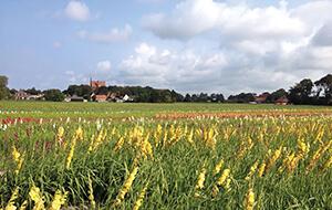 Kennemerland Noord-Holland
